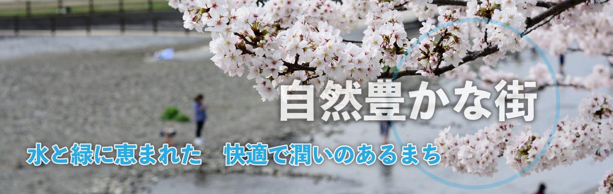 main_image2